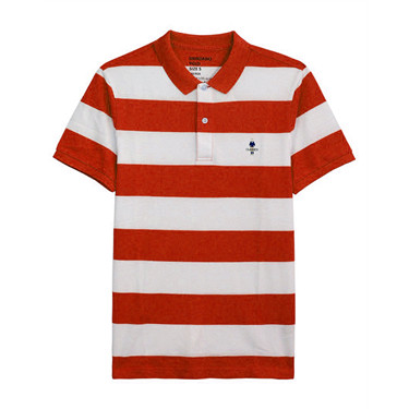 Stripe Polo