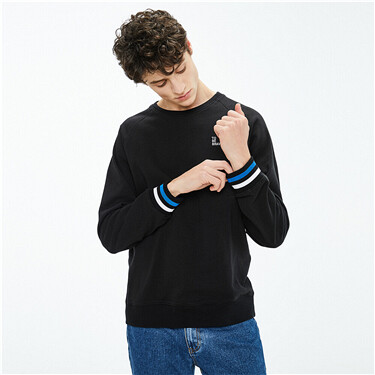 Embroidered letter raglan sleeves sweatshirt