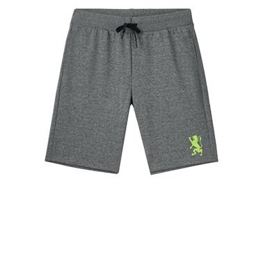 Men Polyester/Cotton Interlock Mid Rise Regular Embroidery G-Motion Shorts