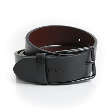 Two-layer leather pin buckle belt