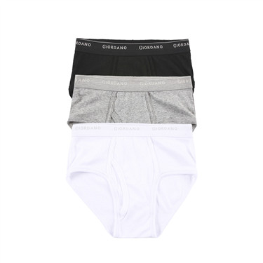 Basic cotton briefs (3-packs)