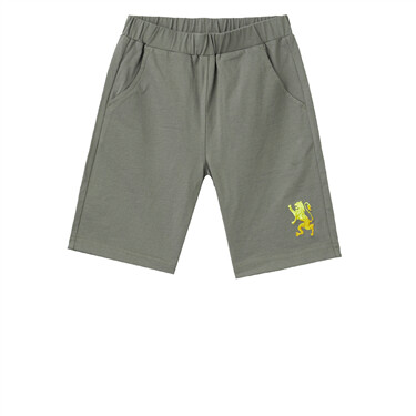 Junior 3D Lion Embroidery Shorts