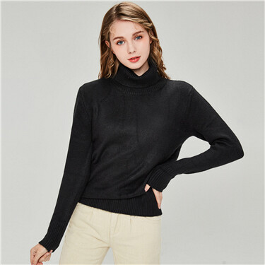 Thick plain turtleneck sweater